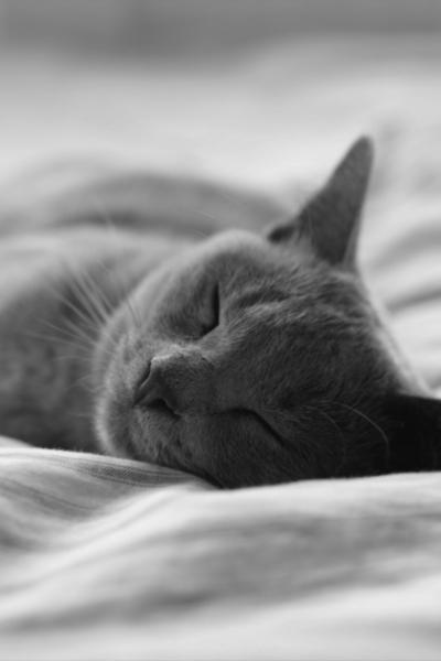 Réjeanne La fatigue pendant les règles : les causes de ce manque d'énergie et les astuces pour la retrouver !
