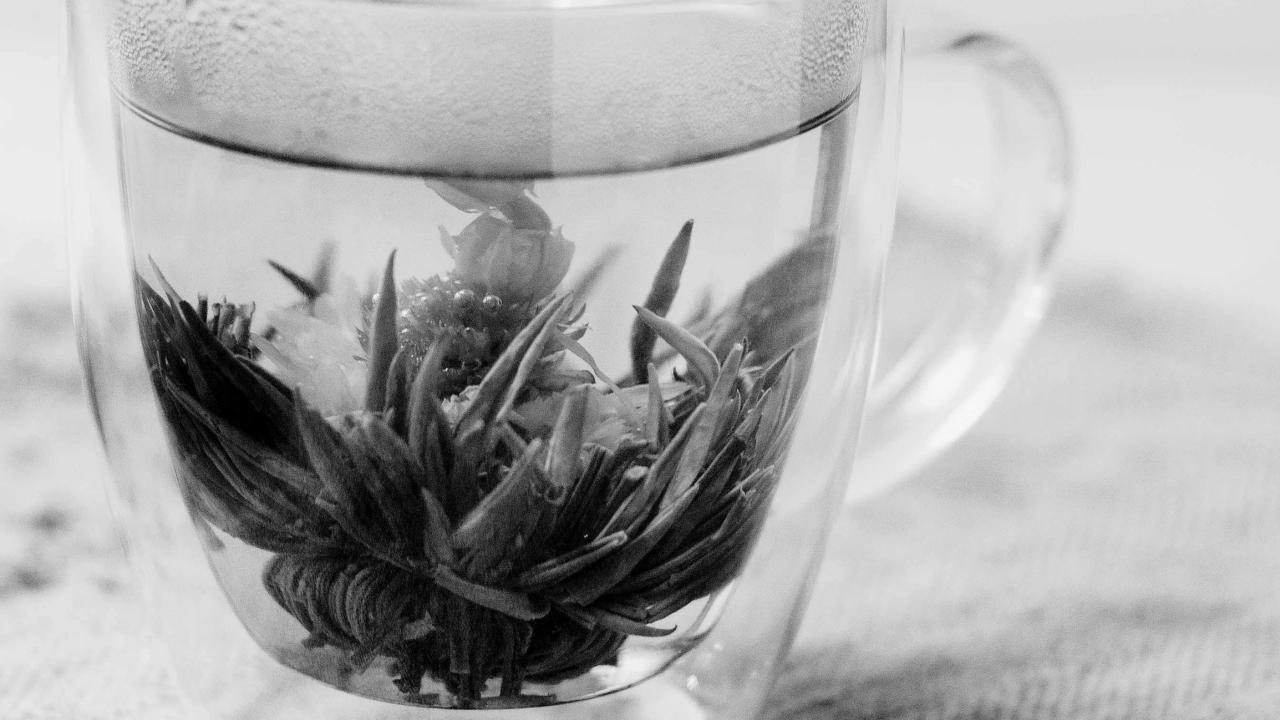 Réjeanne Quelles plantes pour soulager les règles douloureuses ?